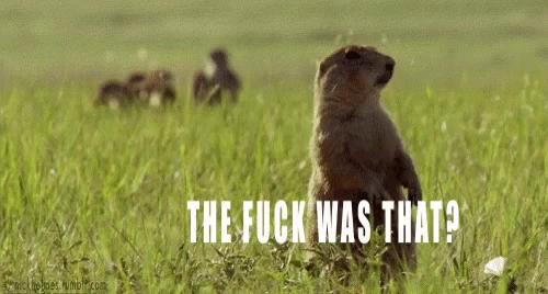 Prairie Dog Poppers